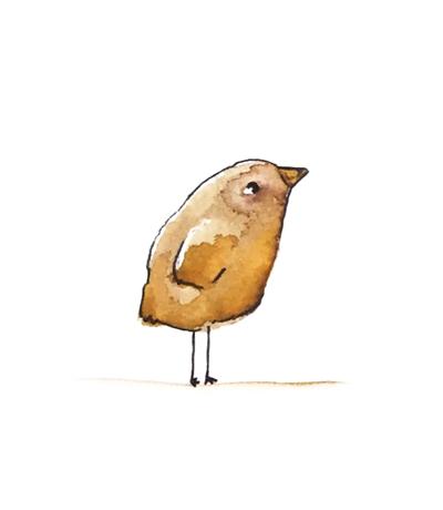 vogel Zeichnung